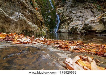 beautiful waterfall in forest autumn landscape. Beauty world