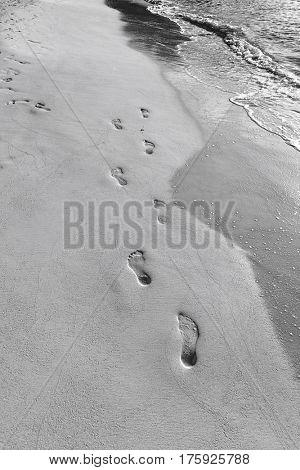 Footprints in sand on beach; Koh Pha Ngan; Thailand