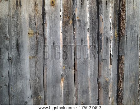 infinitely boggy fence of old wooden boards