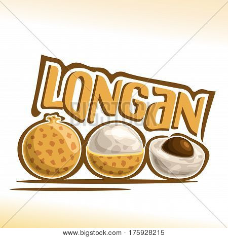 Vector logo Longan Fruit: still life of 3 whole and sliced peeled half longan, fresh thai exotic fruits with white pulp, abstract icon dimocarpus malesianus with title text for label isolated on white