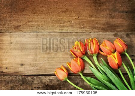 Overhead shot a bouquet of orange and yellow tulips over a rustic wood table top. Flat lay overhead view style.