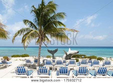 The empty Grand Turk island beach with a whale sculpture (Turks & Caicos). poster
