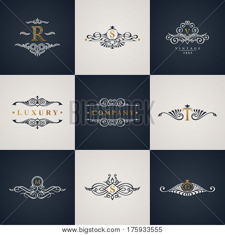 Luxury logo monogram set. Vintage royal flourishes elements. Calligraphic symbol ornament. Letter R, S, V, T, M, G. Raster pattern emblem frame