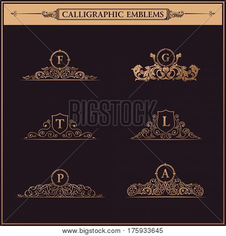 Luxury logo monogram. Vintage royal flourishes elements. Calligraphic symbol ornament. Letter in frame F, G, T, L, P, A. Design luxury set. raster pattern flourishes emblem
