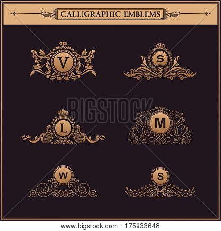 Luxury logos monogram. Vintage royal flourishes elements. Calligraphic symbol ornament. Letter in frame , V, S, L, M, W. Design set Raster pattern emblem