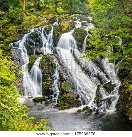 Swallow Falls is a multiple waterfall system in Wales located on the Afon Llugwy near Betws-y-Coed in Conwy