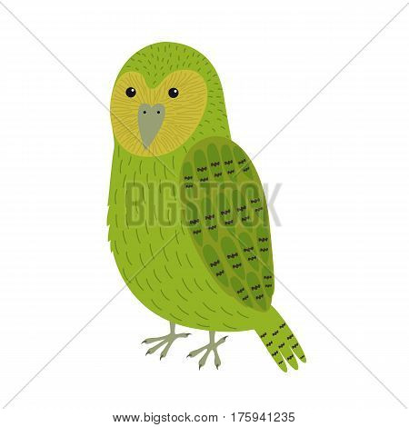 kakapo bird vector illustration for children isolated on white background