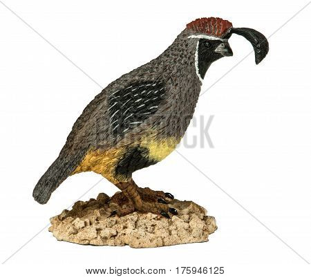 Beautiful ceramic statuette of the California quail isolated on white background