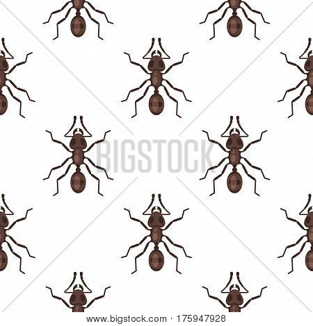 Vector flat style seamless pattern with ants. Icon for web. Isolated on white background. Children's wallpaper.