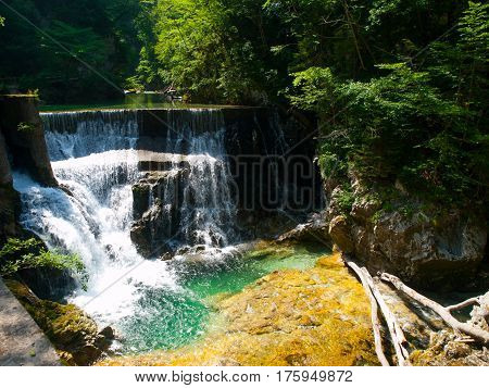 Romantic waterfall with clear blue water in Vintgar Gorge, Radovna River in Julian Alps, Slovenia, Europe.