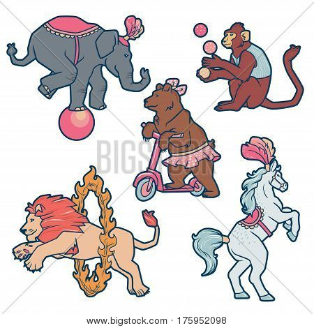 Set of Circus trained wild animals performance isolated on white.
