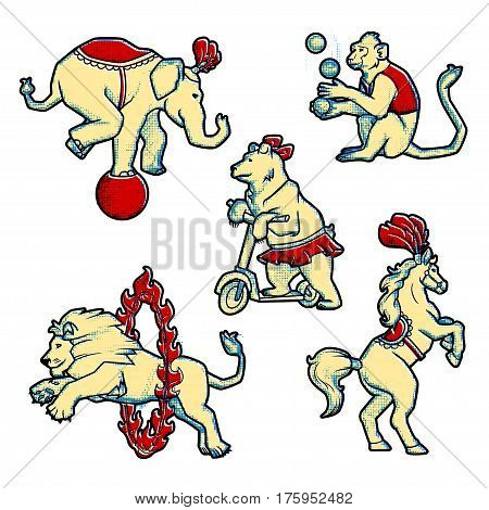 Set of Retro vintage style Circus trained wild animals performance isolated on white.