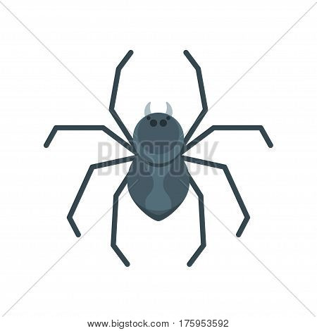 Vector flat style illustration of spider. Icon for web. Isolated on white background.