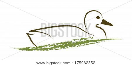 Simple illustration a duck on the water