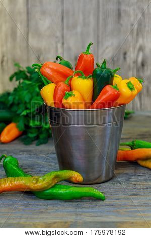 Assorted Peppers And Chilies In A Metal Bucket With Water Droplets Vertical Format