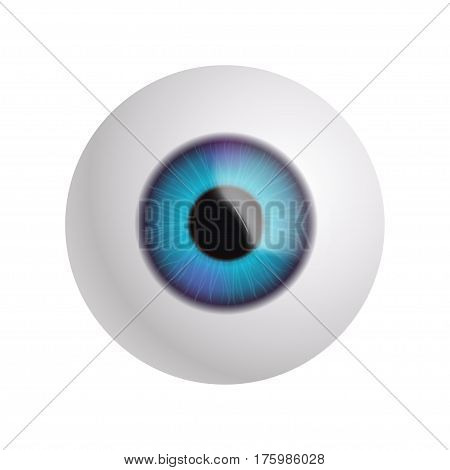 illustration of eyeball isolated on white background