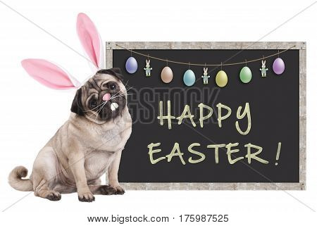 cute pug puppy dog with bunny ears diadem sitting next to chalkboard sign with text happy easter and decoration on white background