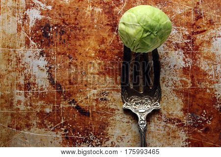 One Brussel sprout rests on a vintage ornate silver fork against tarnished baking sheet with room for copy.
