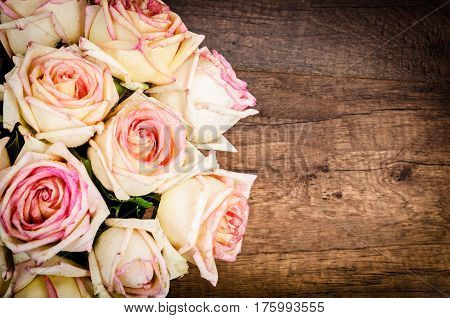 Bunch of pink roses against a wooden wall in a vintage style