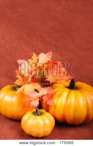 Fall - Thanksgiving Decorations