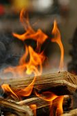 close up photo of fire smoke and wood poster