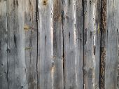 infinitely boggy fence of old wooden boards poster