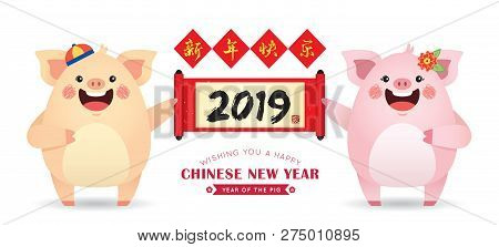 Cute Cartoon Pig Holding Chinese Scroll With Chinese Couplet Isolated On White Background. 2019 Chin