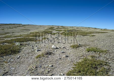 Alpine Grasslands Of Fescue (festuca Indigesta) And Padded Brushwood (juniperus Communis) Located Be