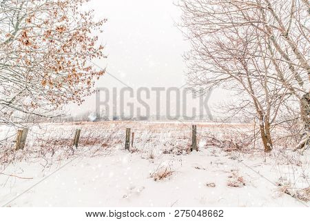 Snow Falling On A Winter Landscape With A Wooden Fence And Barenaked Trees