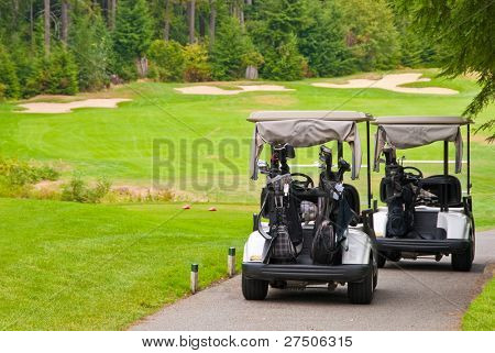 Two golf carts over beautiful green.