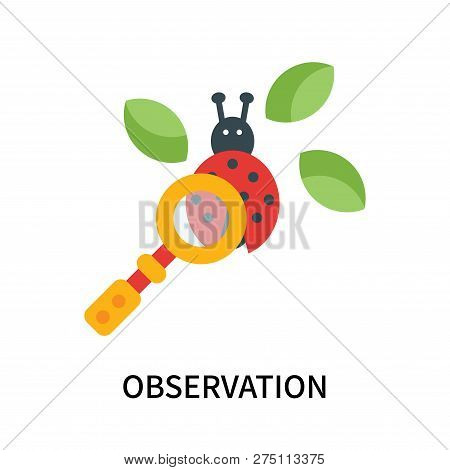 Observation Icon Isolated On White Background. Observation Icon Simple Sign. Observation Icon Trendy