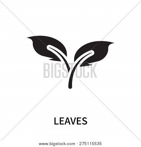 Leaves Icon Isolated On White Background. Leaves Icon Simple Sign. Leaves Icon Trendy And Modern Sym