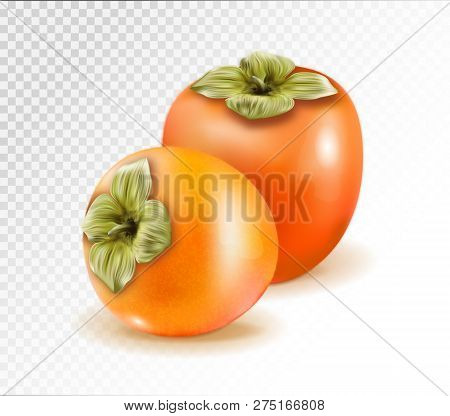 Pair Of Ripe Persimmon Fruits Isolated On Transparent Background. Two Whole Persimmons. Quality Real