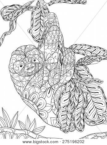A Cute Slothful On The Brunch With Leaves And Ornaments  Image For Relaxing Activity.a Coloring Book