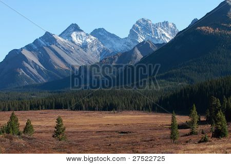 Mountains And Autumn Meadow