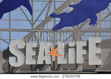 Melbourne Australia - December 4, 2018: Sealife Aquarium In Melbourne Australia