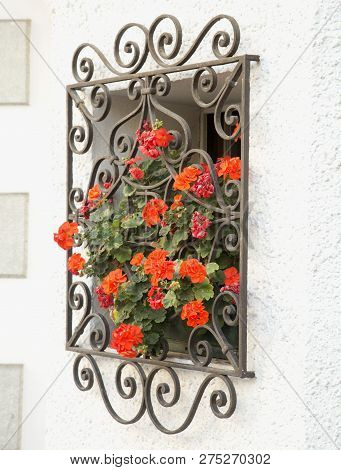 Window With Red Geraniums, Close Up, Vertical Image