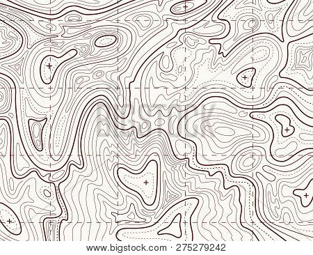 Topographic Map. Trail Mapping Grid, Contour Terrain Relief Line Texture. Cartography Vector Concept
