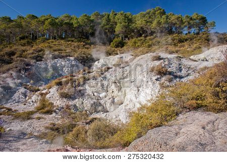 Unique Landscape Of Waimangu Thermal Park In New Zealand