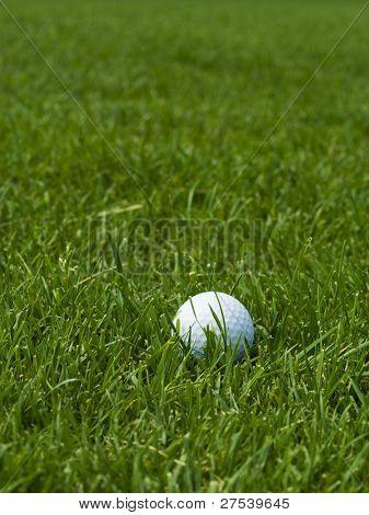 golf ball lying on green lawn