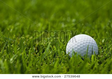 golf ball lying in grass of fairway