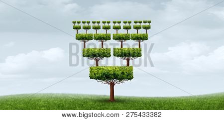 Concept Of Nepotism And Conflict Of Interest Abstract Business Symbol As A Tree With Relatives From