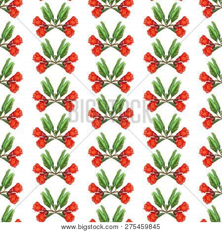 Seamless Pattern With Watercolor Images Of Flowers Of Pomegranate. Good Design For Wallpaper, Fabric