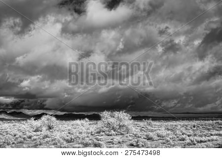 Sonora Desert In Infrared Central Arizona Usa
