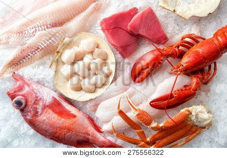 A Selection Of Atlantic Ocean Seafood On Ice.