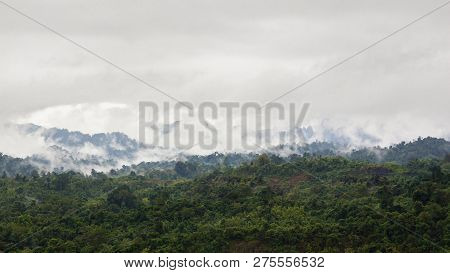 Landscape Of Rain Forest During The Raining Season In Thailand.