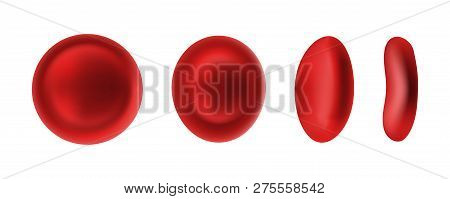 Erythrocyte or red blood cells isolated on white poster