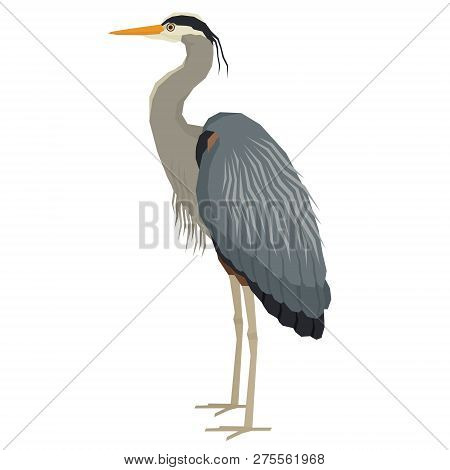 Forest Wild Life Isolated Vector Animals Geometric Great Blue Heron Set