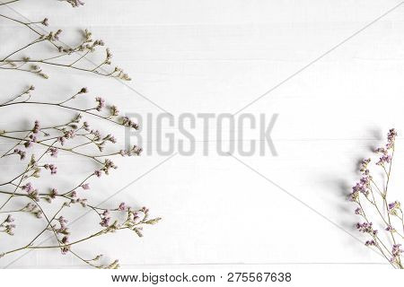 Background Of Wildflowers. Background For A Banner With Natural Colors. Banner With Copyspeis Flower