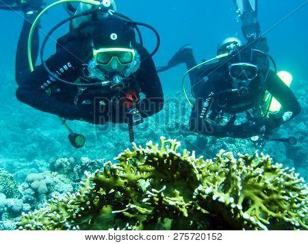 Sea Off The Coast Of Phuket, Thailand - June 20, 2018: A Scuba Diver Over A Coral Reef. Scuba Diving